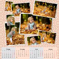 Календарь 2017 - Нежный розовый